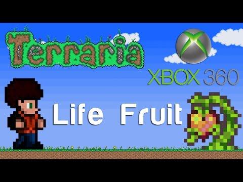 Terraria Xbox - Life Fruit [121]