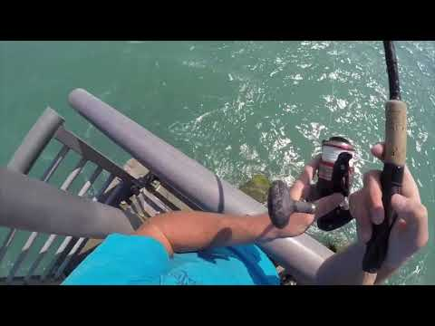Sebastian Inlet Fishing is Exciting!!!!!