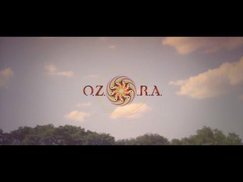 OZORA Festival 2013 (Un-official Afterfilm) ᴴᴰ