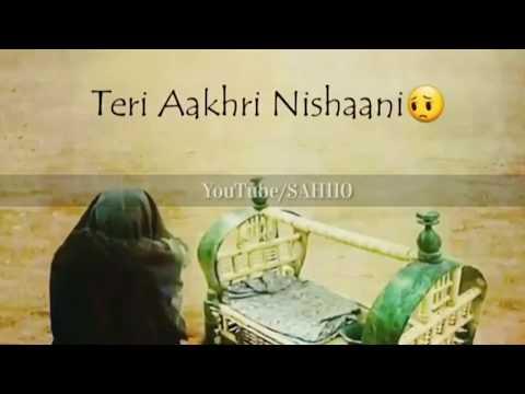 Asghar Mai Teri Maa Mir Hasan Mir Noha WhatsApp Status Urdu-Hindi