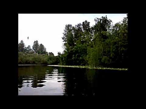 Boating on the Lake Sammamish slough