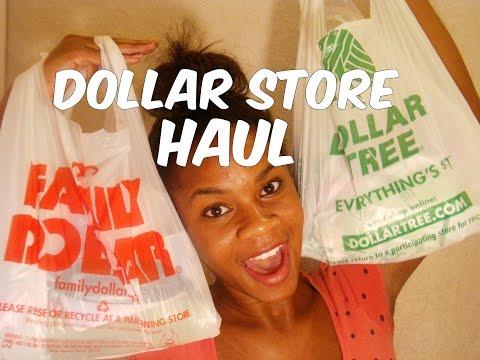 Dollar Tree Store & Family Dollar Haul   daniellejenai