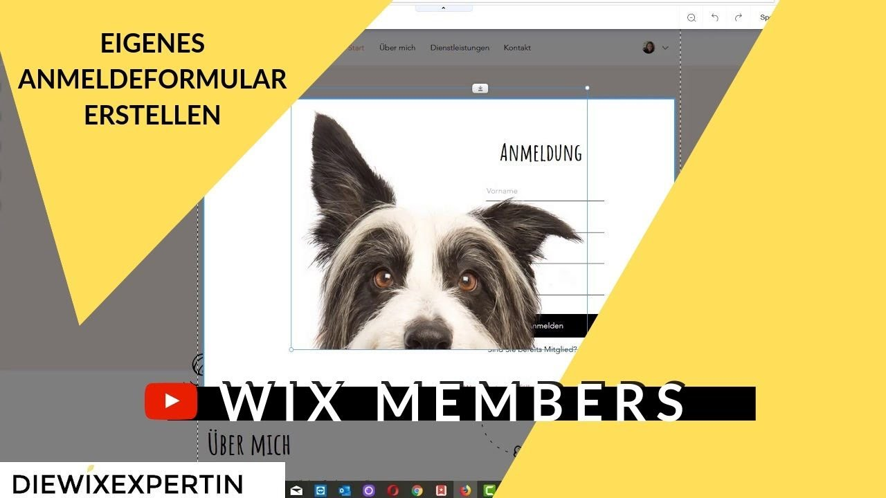 Wix Homepage Login