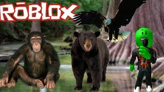 I OPEN A ZOO IN ROBLOX