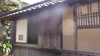 津和野川をはさんで西周旧居と向かい合っている国指定の史跡。 森鴎外は...