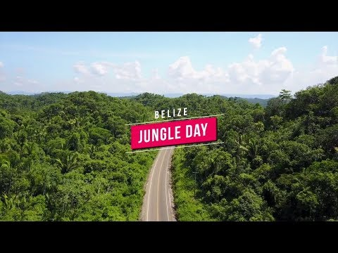 Visiting The JUNGLE In BELIZE!