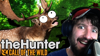 WOUNDED FALLOW DEER - The Hunter: Call of the Wild