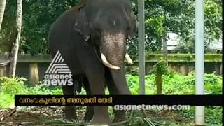 Devaswom board decides to cut the bend tusk of elephant