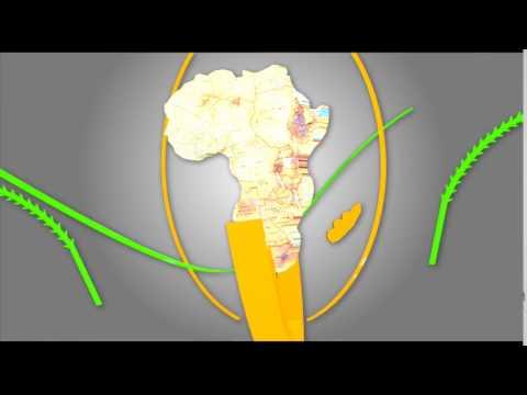 AFRICAN UNION x264