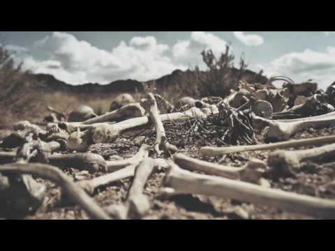Dry Bones (Song by Lauren Daigle & Video by Dan DiFelice)