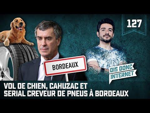 Vol de chien, Cahuzac et Serial creveur de pneus. A Bordeaux - VERINO #127 // Dis donc internet...