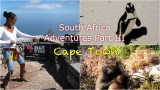 South Africa Adventures Part III: Cape Town