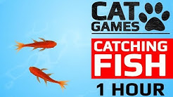 CAT GAMES - 🐟 CATCHING FISH 1 HOUR VERSION (VIDEOS FOR CATS TO WATCH)