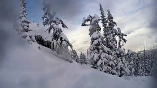 whistler best run of the year 2016
