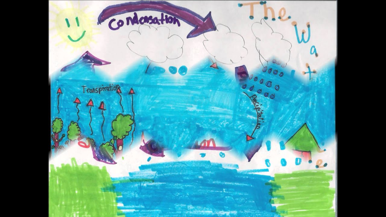 Worksheets Water Cycle Diagram For 5th Grade 5th grade water cycle youtube