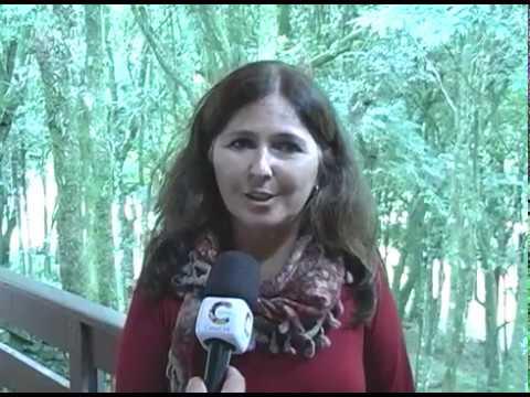 Jornal da Cidade o informativo da TV CIDADE de Farroupilha RS 24 03 17