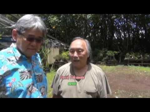 KTA Seniors Living In Paradise November 2014 - 3 of 4