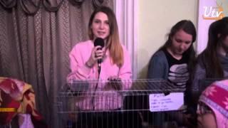 видео 24 декабря в Петербурге пройдет акция по раздаче бездомных кошек и собак