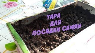 Фото Тара для посадки семян баклажан перца томатов
