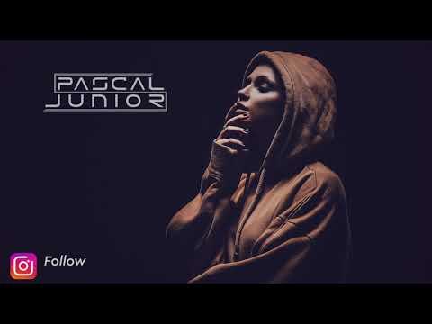Pascal Junior x ZEDD - 365