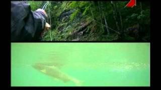 Трейлер. Рибалка в Австрії.avi