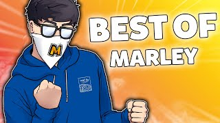 Marley's BEST OF 2020 (so far) - Rainbow Six Siege