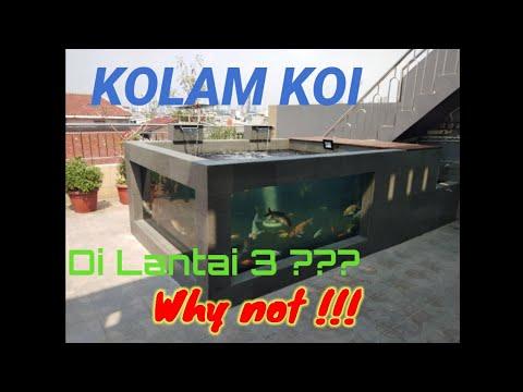 kolam koi minimalis dinding kaca terbaik - youtube