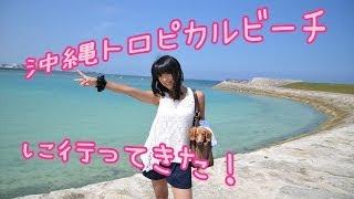 宜野湾トロピカルビーチに行ってきた! 佐藤さくら 佐藤さくら 検索動画 30