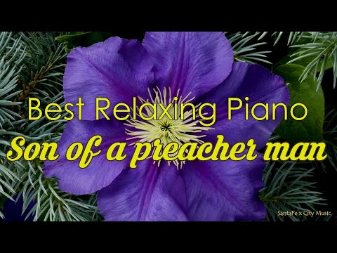 Son of a preacher man #1 🍇Best relaxing piano, Beautiful Piano Music | City Music