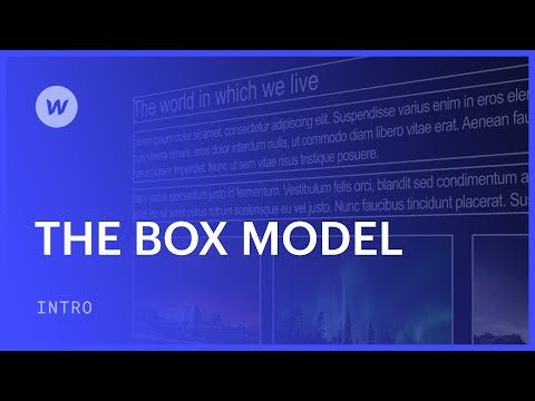 The box model for beginners web design tutorial