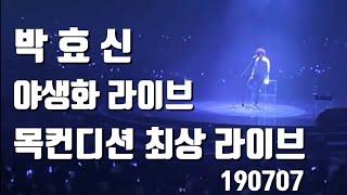 190707_박효신 콘서트_야생화 / 목컨디션 최상 라이브_레전드