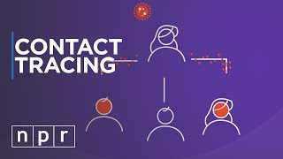 Contact Tracing: What We Can Learn From Outbreaks In Other Countries To Fight the Coronavirus | NPR