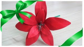 Bico de Papagaio (Flor do Natal)