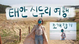 태안 신두리 해안사구 서해바다 조개캐기 vlog