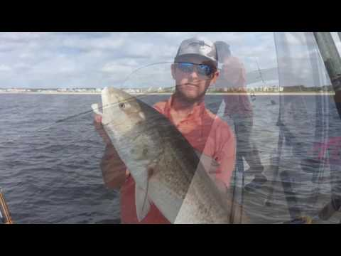 Bull Reds And Big False Albacore: Wilmington NC Fishing Charter