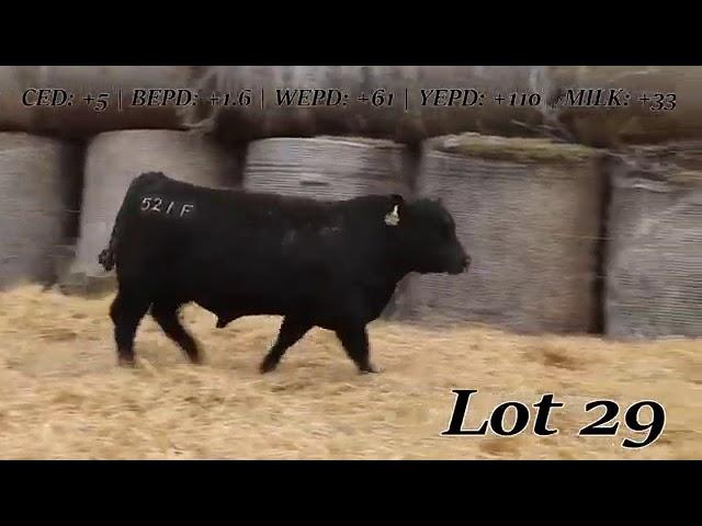 Sweiger Farms Lot 29