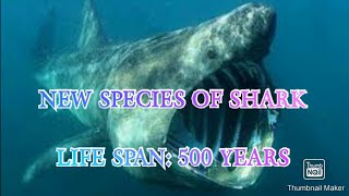 The longest living vertebrate|| सबसे लंबी जीवनशैली वाली शार्क|| KNOWLEDGE HUB||