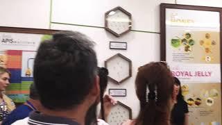 Шоу змей в рамках обзорной экскурсии Пхукет
