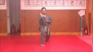Jyoshinmon Shorin Ryu-Pinan Yondan Step by Step