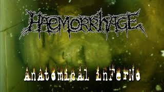 Watch Haemorrhage Worminfested Cavities video