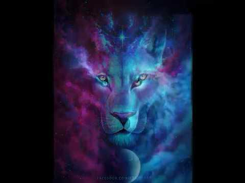 Lion wolf wallp...