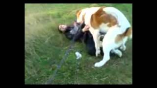 Человек собаке друг!!!!.mp4