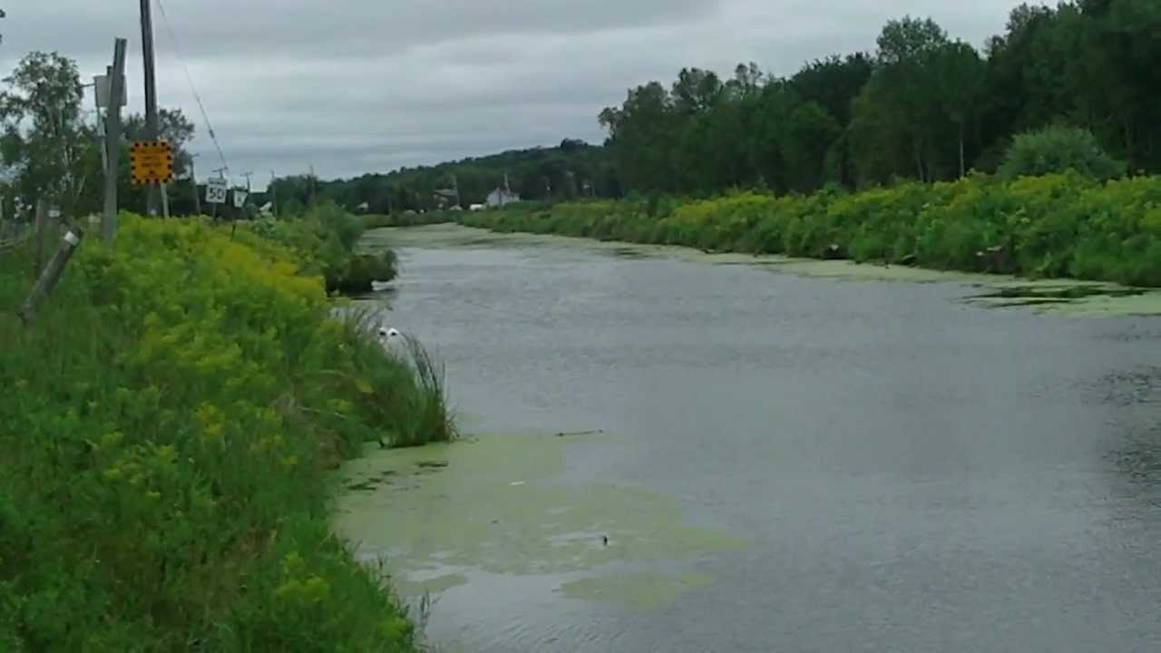 Holland River Fishing GTA YouTube