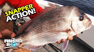 THE BEST TIMES FOR SNAPPER Shallow Water Winter Snapper