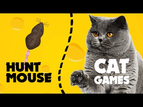 CAT GAMES MOUSE HUNT ★ video for cats 1 hour