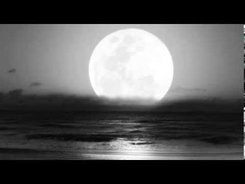 Anymore - Starhanger mp3