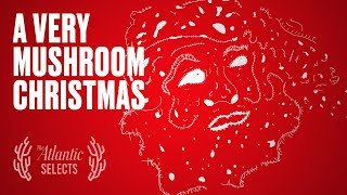 Santa Is a Psychedelic Mushroom