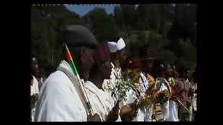 Yunivarsitii Wallaggaa fi Ummata Oromoo naannoo Naqamtee Irreeffachuun Waaqaaf galata jedhan