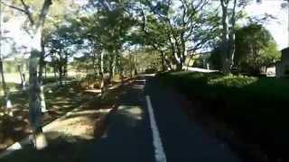 自転車で散歩007 豊橋市岩田運動公園周り 10月 GE DV1+KSW-3魚眼