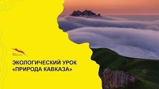 """Всекавказский экологический урок """"Природа Кавказа"""""""